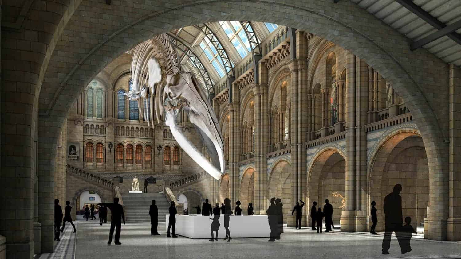 an insider s guide to the natural history museum evan evans tours