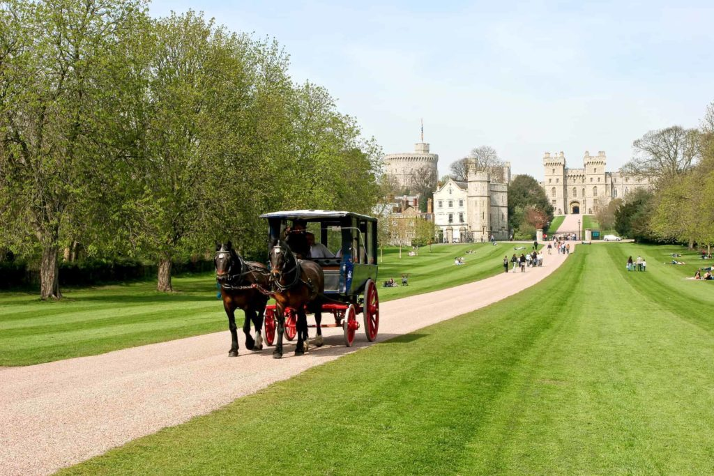horse and carriage in windsor park