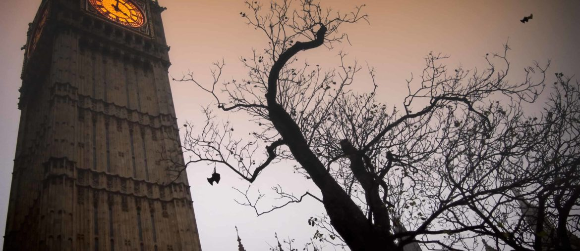 The spooky clock tower of Westminster with a bare tree and flying bats